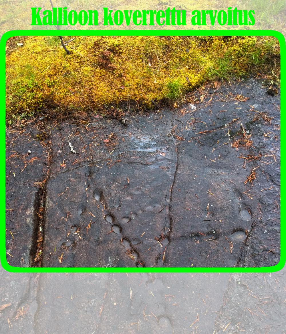 Märkä kallio, jossa on pyöreitä koloja rivissä. Kolojen rivejä menee ristiin ja rastiin. Kuvan yläreunassa sammalta.